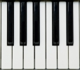Piano Keyboard_Tiny