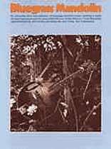 Jack Tottle - Bluegrass Mandolin Music Book